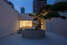 Photograph: Yasunori Shimomura. House with Podocarpus / Yasutoshi Mifune + Toru Atarashi / 2014