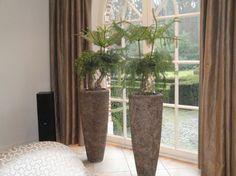 Ga voor een stoere aankleding met moderne potten en planten voordeur intratuin idee n voor - Moderne entree decoratie ...