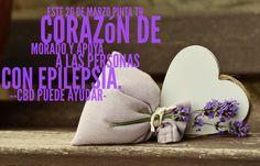 Día púrpura existe porque la epilepsia existe! Todos podemos vencer el estigma social! #diamundialepilepsia#