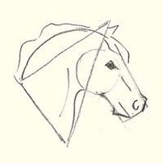 Here's How to Draw a Horse Head: Adding Detail to the Horse's Head