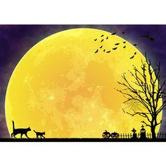 ハロウィンクロネコと満月の背景無料イラスト画像