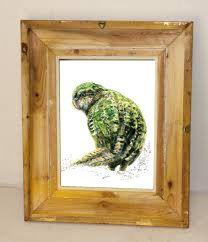 New Zealand native bird, Kākāpo illustrated postcard, print from original watercolor and ink painting artwork, Wild life wall art
