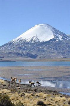 Parinacota, Chile