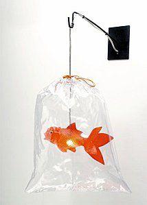 Nice fish lighting, we're gonna stock tjis at http://kewlighting.co.uk/
