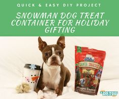 Spread Cheer with Blue Buffalo and a DIY Snowman Treat Holder   A Dog Walks into a Bar - All things Dogs and Drinking Dog Treat Container, Diy Dog Treats, Boston Terrier Love, Diy Snowman, Treat Holder, Animal Crafts, Diy Stuffed Animals, Dog Walking, Easy Diy Projects