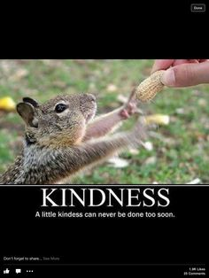 Sweet! Be kind to animals and humans!