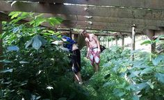 The Inside: the guys had to literally climb up the river bank and walk through a field to get to the ghost ship. As you can see the vegetation had taken over in there as well.