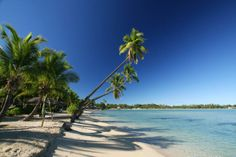 Musket Cove Island Resort – Mamanuca Islands Accommodation – Exquisite Fiji