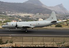 Portugal - Air Force 14810 Lockheed Orion by Vitor Emanuel Air Force Aircraft, Photo Online, Cold War, Armed Forces, Military Aircraft, Portuguese, Airplane, Planes, Fighter Jets