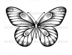 Resultado de imagen para transferencias mariposas blanco y negro