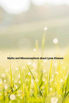 Myths and Misconceptions about Lyme Disease via @iamraymondphili
