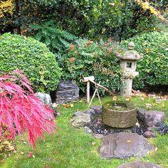 Stone Lantern in Kyoto Garden