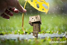 danboard   hi... I am Danboard™   by Photost0ry©   Flickr - Photo Sharing!