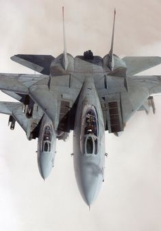 F14-Tomcat ... awesome ... my son is now over the F-18 Hornets -  Proud Mom!
