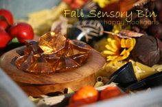 Fall Sensory Bin - lots of texture exploration and fine motor fun - happy hooligans