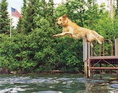 Nice leap!