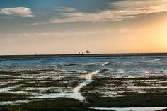 paisagem- Estação Ecológica do TAIM