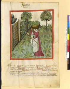 Medieval Histories brings you the news about current exhibitions, new books and new research about the Middle Ages Medieval Life, Medieval Art, Medieval Crafts, Medieval Clothing, Medieval Manuscript, Illuminated Manuscript, 15th Century Clothing, Historical Art, Historical Illustrations