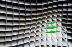 1X - green beyond by Linda Wride