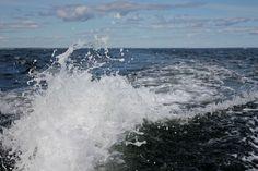 #ocean #sea #splash #waves