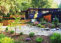 Seattle Dwell House, love the exterior paint color and house numbers--modern house, modern yard