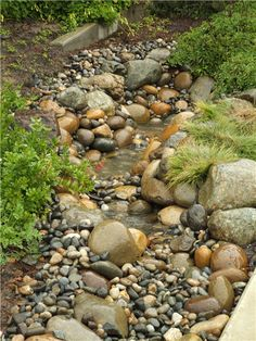 landscape creek bed - made one of these once when I was in landscaping--loads of fun-
