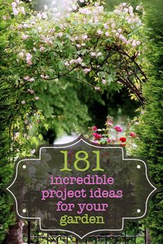 Wow! 181 incredible project ideas for your garden!