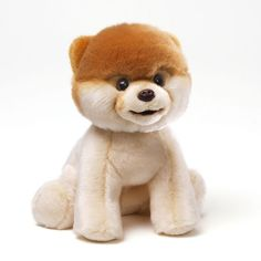babyGUND Boo the Dog Plush Toy, Multicolor