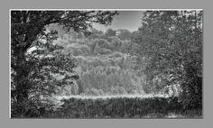 'Abendstimmung am Flußdamm monochrom pp' von Rudolf Büttner bei artflakes.com als Poster oder Kunstdruck $18.71