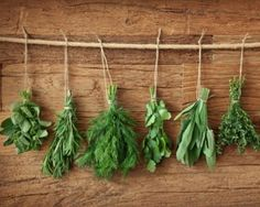 5 herbs to grow