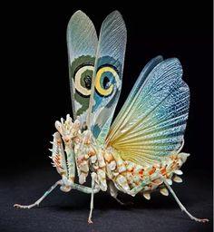"""sweetdeffect: """"Flower praying mantis. """""""