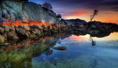 Tasmania (Australia)