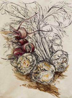 Celeriac & Beetroot I Original artwork Natasha Clutterbuck Vegetable Drawing, Ap Studio Art, Ap Art, Fruit Art, Art Sketchbook, Botanical Illustration, Art Techniques, Art Studios, Art Inspo
