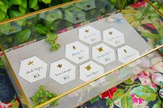 insect escort cards