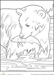 Color the Fishing Bear Worksheet