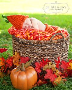 baby photo, pictures, fall, pumpkin