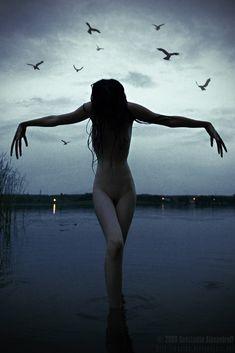 Crow Master by Kostassoid