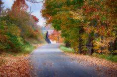 Rustic Country Lane Under Vermont Fall Colors Photograph. Driving the back country lanes of Danville Vermont, you never know what will be spotted over the next hill.
