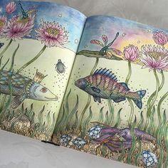 Så här blev den när den blev klar #sommarnatt #hannakarlzon #coloring #coloringbook #målarbokförvuxna #daydreamscolouring