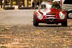 Alfa Romeo TZ2, I love the Alfa brand and I love their back catalogue. I am full of hope that they start to make some wonderful cars again soon.