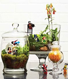 Make a Lego Terrarium (Photo by Carlo Mendoza)     Added by Geek+Nerd: I think it would be awesome saucey to take my friend's Star Wars Lego figures and make mini worlds!