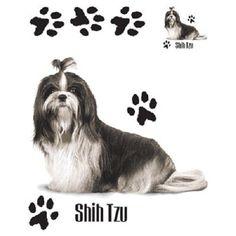 Shih Tzu Dog HEAT PRESS TRANSFER for T Shirt Tote Sweatshirt Fabric Block #910f #AB