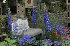 国際バラとガーデニングショウ2012 その2 - からももの庭