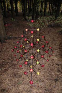 Land  Art - Apples and sticks