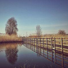 A moment of tranquility… @ Sint - Baafs - Vijve