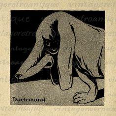BOGO SALE Dachshund Wiener Dog Digital Image Download Printable Graphic Vintage Clip Art for Transfers etc