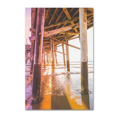 Ariane Moshayedi 'Newport Pier 3' Canvas Art