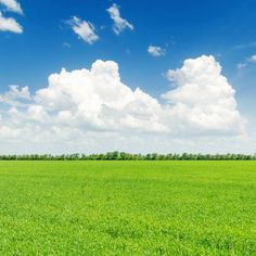 green grass field and blue sky with white clouds over it
