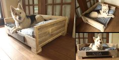 You can make a big bed for a larger dog. You can sew a pillow for the dog, use blankets or just use a store bought bed and place it inside the ...