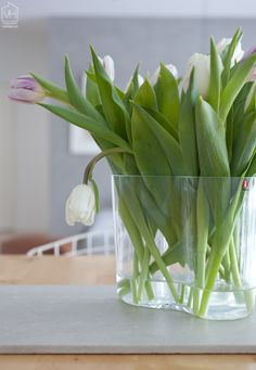 http://www.aitonordic.it/products/vaso-alvar-aalto-iittala